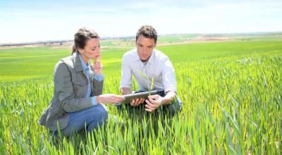 Il patentino per essere abilitati all'utilizzo dei prodotti fitosanitari.